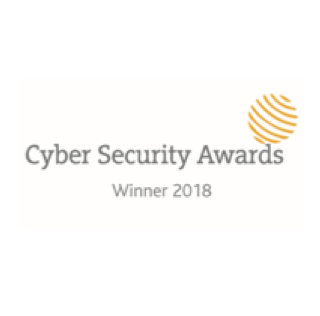 cyber security awards winner