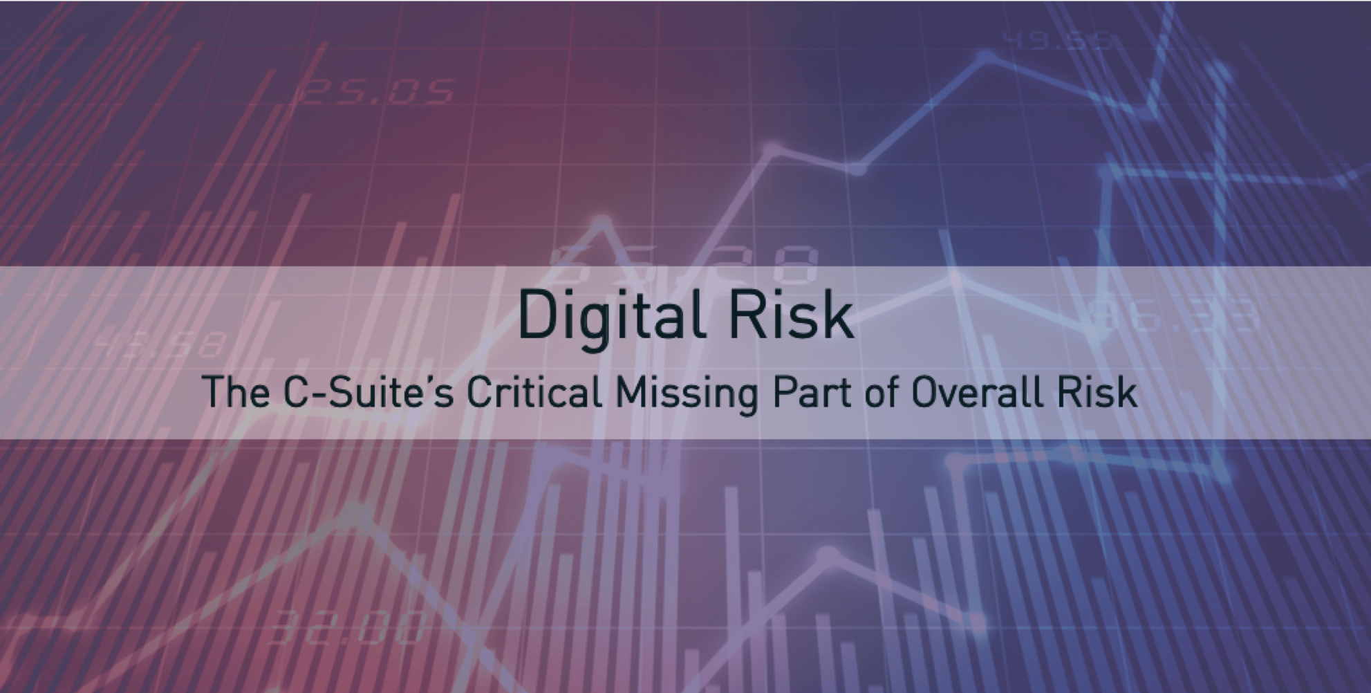 C Level Digital Risk