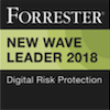 Leader in Digital Risk Protection