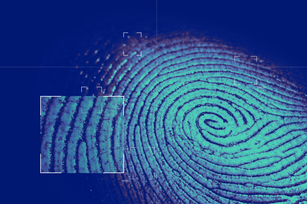 ds-fingerprint-01-3x2 (1)
