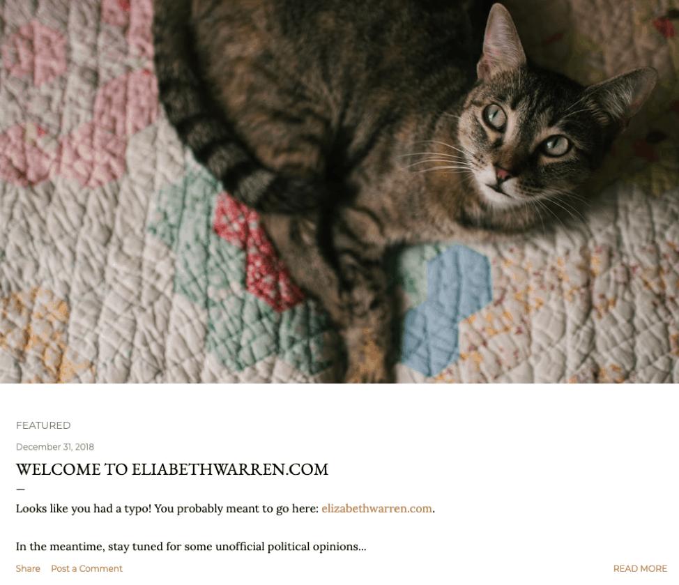 Typosquat detected example kitty