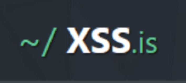 XSS logo