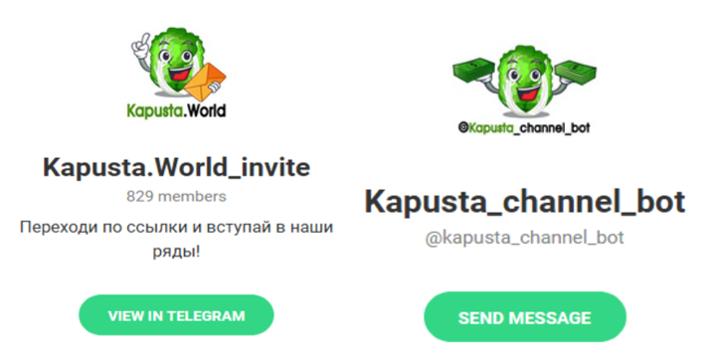 kapusta consistent branding telegram
