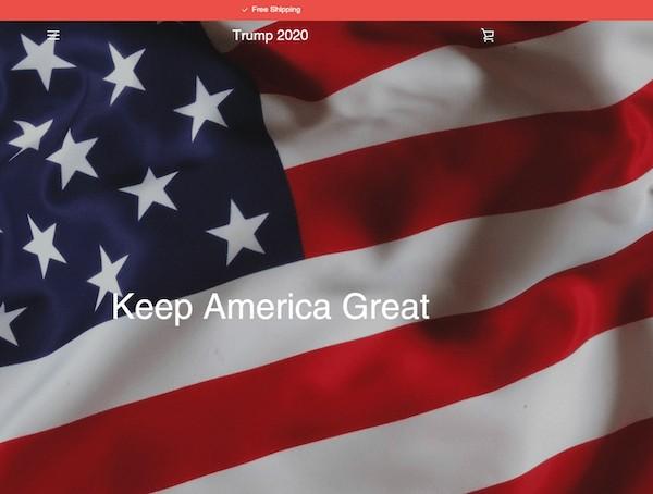Illegitimate US 2020 Election Site
