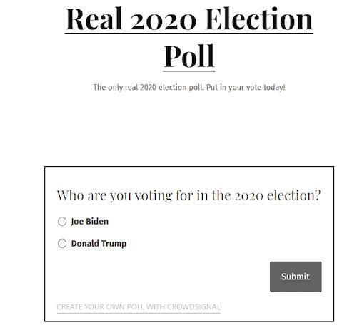 Illegitimate 2020 US election site